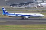 おみずさんが、羽田空港で撮影した全日空 A321-211の航空フォト(写真)