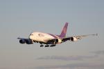 かずまっくすさんが、成田国際空港で撮影したタイ国際航空 A380-841の航空フォト(写真)