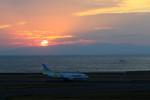 中部国際空港 - Chubu Centrair International Airport [NGO/RJGG]で撮影されたAIR DO - Hokkaido International Airlines [HD/ADO]の航空機写真