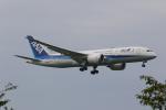 OS52さんが、成田国際空港で撮影した全日空 787-8 Dreamlinerの航空フォト(写真)