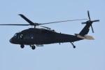 デルタおA330さんが、霞ヶ関カンツリー倶楽部で撮影したアメリカ陸軍 UH-60L Black Hawk (S-70A)の航空フォト(写真)