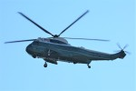 デルタおA330さんが、霞ヶ関カンツリー倶楽部で撮影したアメリカ海兵隊 VH-3D Sea King (S-61B)の航空フォト(写真)