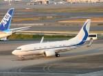よんすけさんが、羽田空港で撮影したハンワ・ケミカル 737-7EG BBJの航空フォト(写真)