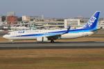 みるぽんたさんが、伊丹空港で撮影した全日空 737-881の航空フォト(写真)