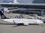 そのまんま南さんが、中部国際空港で撮影した全日空 737-881の航空フォト(写真)