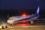 はるさんが、山口宇部空港で撮影した全日空 A321-272Nの航空フォト(飛行機 写真・画像)