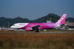 ふるぴーさんが、松山空港で撮影したピーチ A320-214の航空フォト(飛行機 写真・画像)