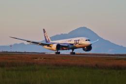 ふるぴーさんが、松山空港で撮影した全日空 787-8 Dreamlinerの航空フォト(飛行機 写真・画像)