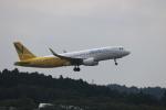 motokimuさんが、成田国際空港で撮影したバニラエア A320-214の航空フォト(写真)
