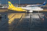 Simeonさんが、新千歳空港で撮影したバニラエア A320-214の航空フォト(写真)