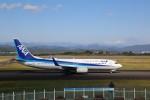 トールさんが、静岡空港で撮影した全日空 737-881の航空フォト(写真)