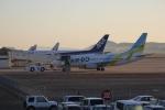 だいまる。さんが、岡山空港で撮影したAIR DO 737-781の航空フォト(写真)