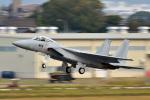 鈴鹿@風さんが、名古屋飛行場で撮影した航空自衛隊 F-15J Eagleの航空フォト(写真)