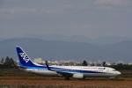 JA8565さんが、佐賀空港で撮影した全日空 737-881の航空フォト(写真)