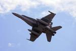 tsubameさんが、岩国空港で撮影したアメリカ海兵隊 F/A-18C Hornetの航空フォト(写真)