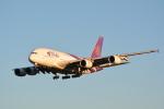 LEGACY747さんが、成田国際空港で撮影したタイ国際航空 A380-841の航空フォト(写真)
