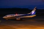 HISAHIさんが、長崎空港で撮影したANAウイングス 737-54Kの航空フォト(写真)