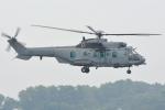 euro_r302さんが、スルタン・アブドゥル・アジズ・シャー空港で撮影したマレーシア空軍 EC725AP Cougar Mk2+の航空フォト(写真)