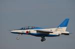 382kossyさんが、入間飛行場で撮影した航空自衛隊 T-4の航空フォト(写真)