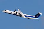 YAMMARさんが、仙台空港で撮影したANAウイングス DHC-8-402Q Dash 8の航空フォト(写真)