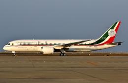 SKY TEAM B-6053さんが、中部国際空港で撮影したメキシコ空軍 787-8 Dreamlinerの航空フォト(飛行機 写真・画像)