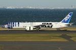 たみぃさんが、羽田空港で撮影した全日空 787-9の航空フォト(写真)