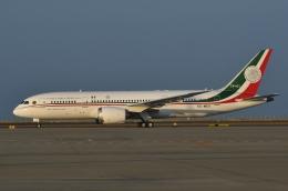 ★グリオさんが、中部国際空港で撮影したメキシコ空軍 787-8 Dreamlinerの航空フォト(飛行機 写真・画像)