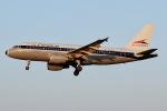 JRF spotterさんが、ボルティモア・ワシントン国際空港で撮影したアメリカン航空 A319-112の航空フォト(写真)