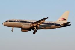 JRF spotterさんが、ボルティモア・ワシントン国際空港で撮影したアメリカン航空 A319-112の航空フォト(飛行機 写真・画像)