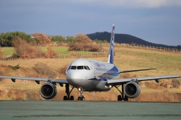 Tomochanさんが、函館空港で撮影した全日空 A320-211の航空フォト(写真)