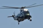 じゃまちゃんさんが、川越市内で撮影したアメリカ海兵隊 VH-3D Sea King (S-61B)の航空フォト(写真)