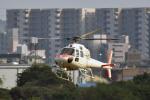 鈴鹿@風さんが、名古屋飛行場で撮影した中日本航空 AS355F2 Ecureuil 2の航空フォト(写真)