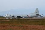 スカルショットさんが、岐阜基地で撮影した海上自衛隊 OP-3Cの航空フォト(写真)