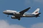 木人さんが、成田国際空港で撮影したバンコクエアウェイズ A319-131の航空フォト(写真)
