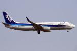 A-Chanさんが、新千歳空港で撮影した全日空 737-881の航空フォト(写真)