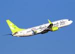 voyagerさんが、羽田空港で撮影したソラシド エア 737-81Dの航空フォト(飛行機 写真・画像)