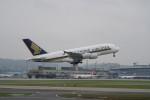pringlesさんが、チューリッヒ空港で撮影したシンガポール航空 A380-841の航空フォト(写真)
