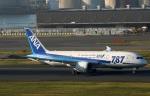 Wasawasa-isaoさんが、羽田空港で撮影した全日空 787-8 Dreamlinerの航空フォト(写真)