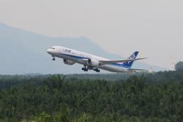 Kinyaさんが、クアラルンプール国際空港で撮影した全日空 787-9の航空フォト(飛行機 写真・画像)