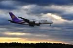 flytaka78さんが、成田国際空港で撮影したタイ国際航空 A380-841の航空フォト(写真)