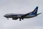 Polarisさんが、大館能代空港で撮影した全日空 737-781の航空フォト(写真)
