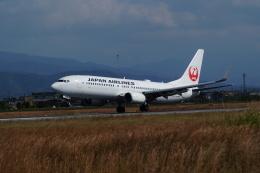 ふるぴーさんが、松山空港で撮影した日本航空 737-846の航空フォト(飛行機 写真・画像)