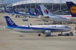 徳兵衛さんが、関西国際空港で撮影した全日空 A320-271Nの航空フォト(写真)