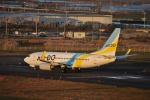 やす!さんが、仙台空港で撮影したAIR DO 737-781の航空フォト(写真)