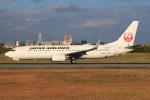JA56SSさんが、伊丹空港で撮影した日本航空 737-846の航空フォト(写真)