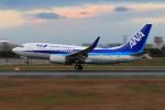 JA56SSさんが、伊丹空港で撮影した全日空 737-781の航空フォト(写真)