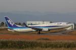 幹ポタさんが、佐賀空港で撮影した全日空 737-881の航空フォト(写真)