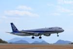 いんふぃさんが、広島空港で撮影した全日空 A321-211の航空フォト(写真)