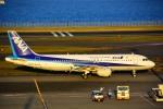 HISAHIさんが、羽田空港で撮影した全日空 A320-211の航空フォト(写真)