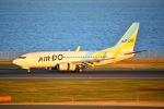 HISAHIさんが、羽田空港で撮影したAIR DO 737-781の航空フォト(写真)